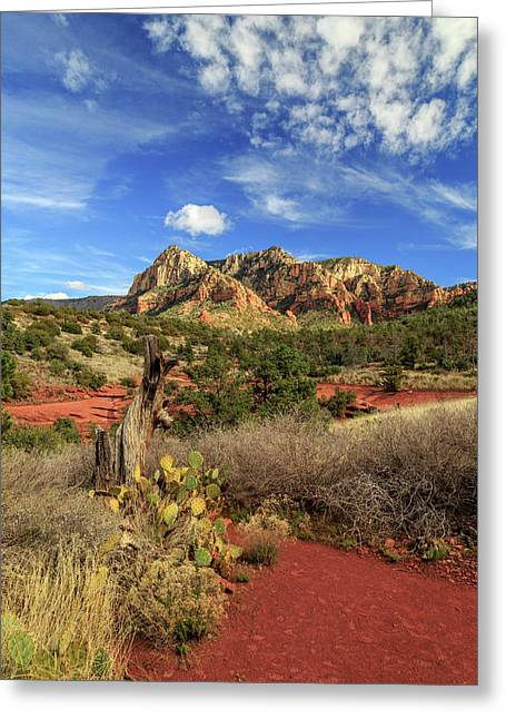 Greeting Card featuring the photograph Red Dirt And Cactus In Sedona by James Eddy