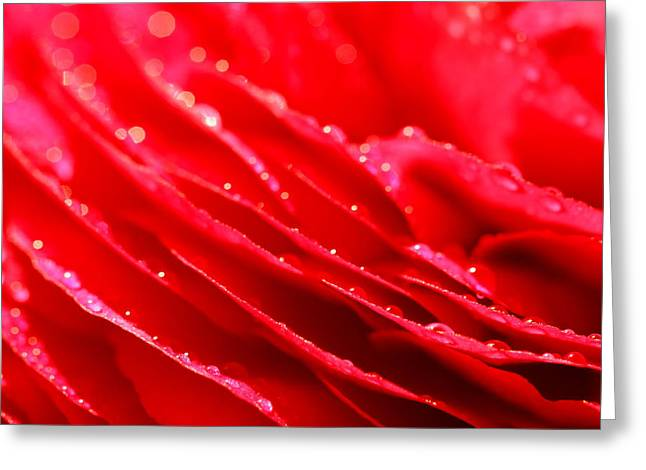 Red Drops Greeting Card by Heike Hultsch