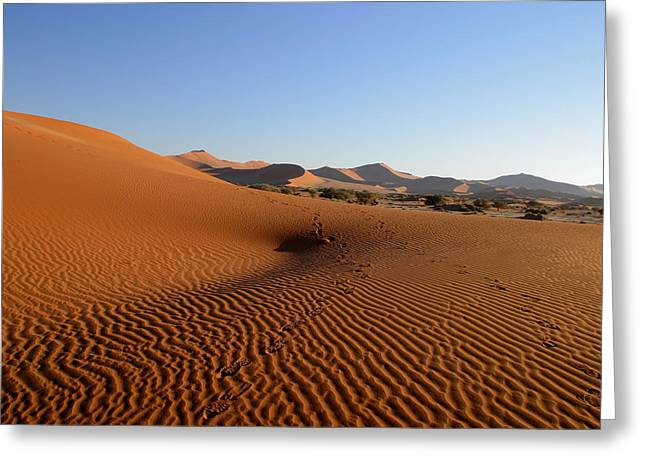 Greeting Card featuring the photograph Red Dunes Of Namibia by Riana Van Staden