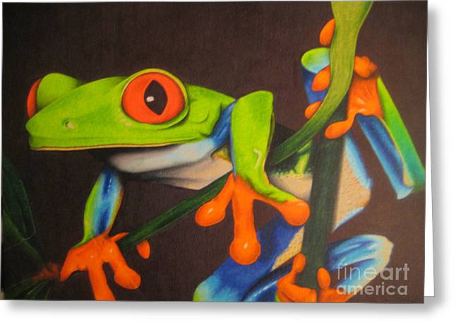 Red Eye Tree Frog Greeting Card by Brian Schuster