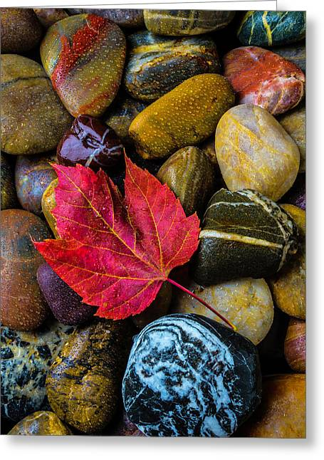 Red Fallen Leaf On River Stones Greeting Card by Garry Gay