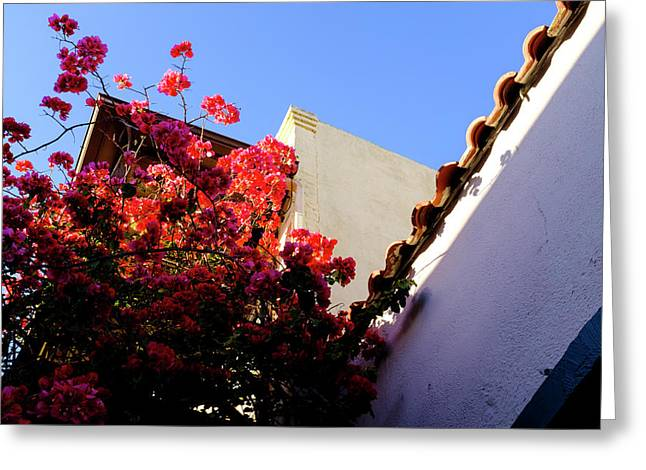 Red Flowers And Architecture In Saint Augustine Florida Greeting Card