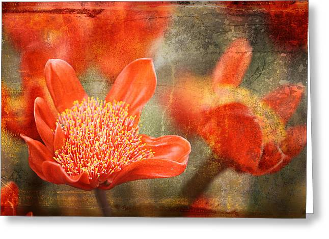 Red Flowers Greeting Card by Larry Marshall