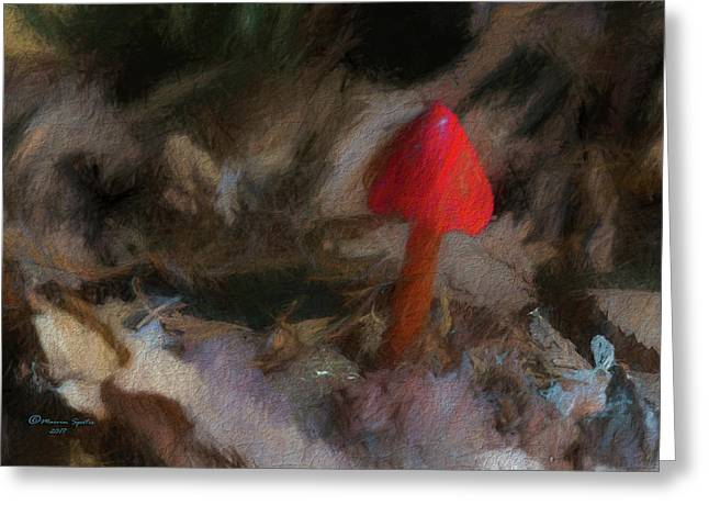 Red Forest Mushroom Greeting Card
