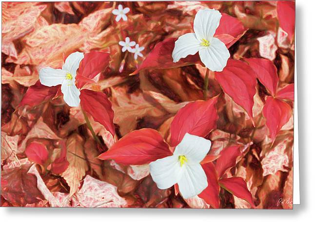 Red Forest White Flowers Greeting Card