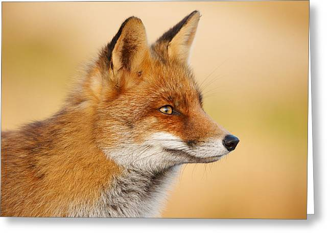 Red Fox Face Greeting Card by Roeselien Raimond