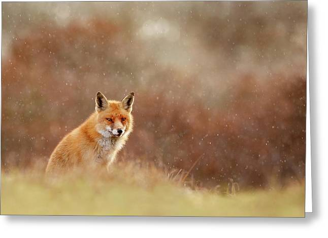 Red Fox In A Snow Shower Greeting Card by Roeselien Raimond
