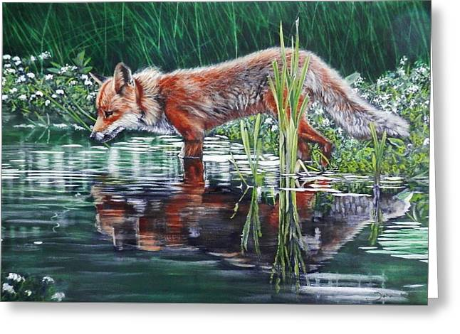 Red Fox Reflecting Greeting Card
