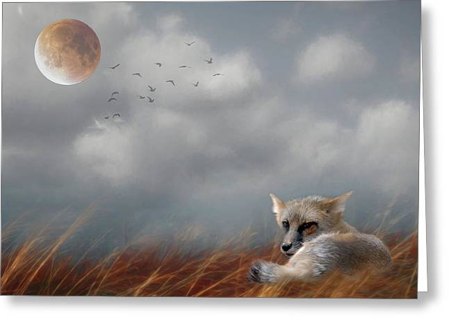 Red Fox In The Moonlight Greeting Card