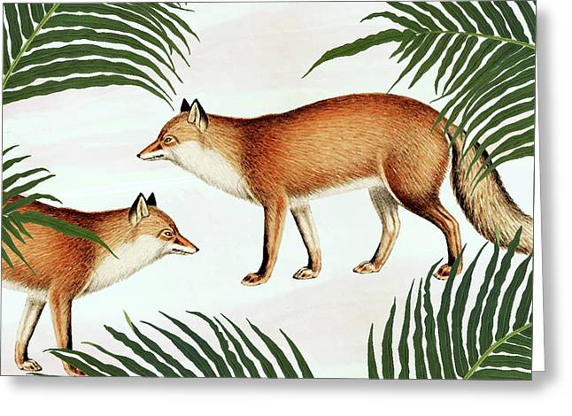 Red Fox Pair Greeting Card