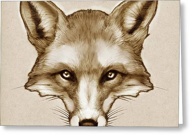 Red Fox Sketch Greeting Card