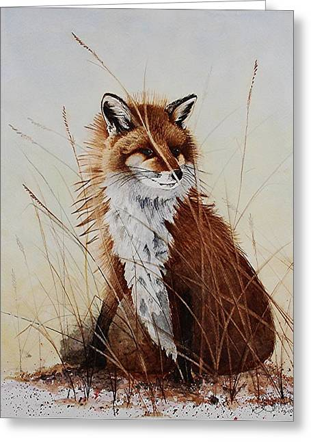 Red Fox Waiting On Breakfast Greeting Card