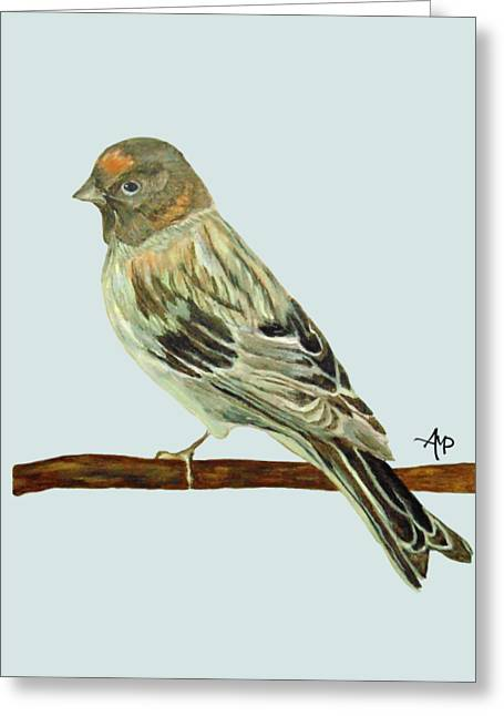 Red-fronted Serin Greeting Card