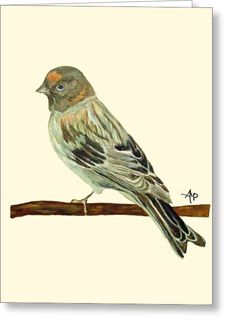 Red-fronted Serin Greeting Card by Angeles M Pomata