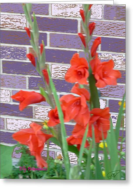 Red Gladiolas Greeting Card