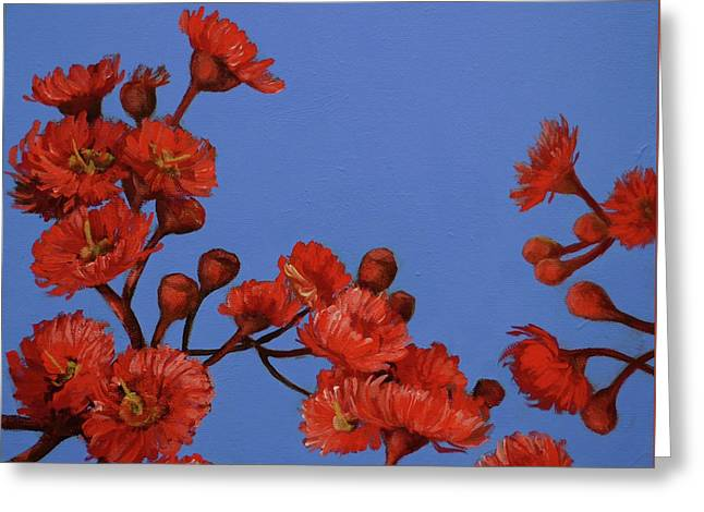 Red Gum Blossoms Greeting Card