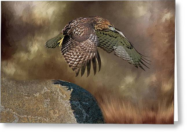 Greeting Card featuring the photograph Red Hawk Down by Donna Kennedy