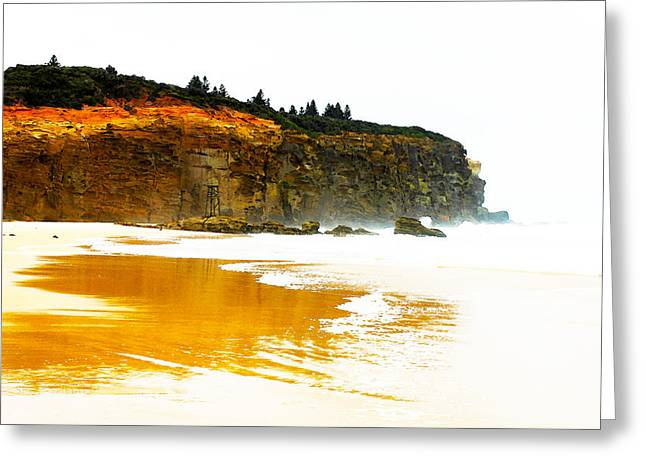 Red Head Beach Greeting Card by Susan Vineyard