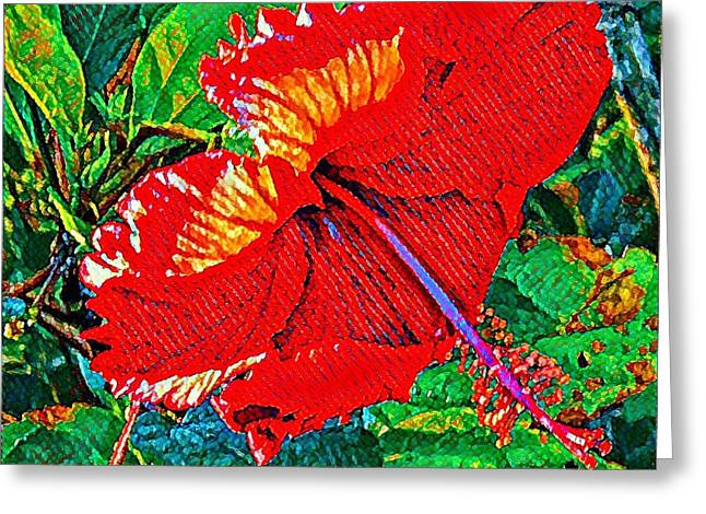 Red Hibiscus Aslant Greeting Card