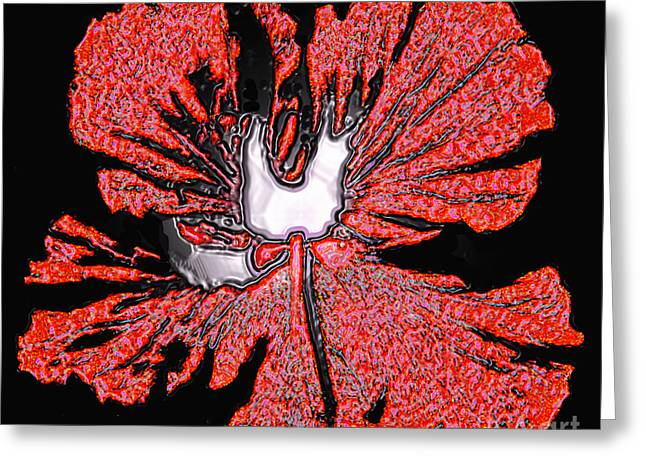 Red Hibiscus Flower In Three Dimensions Greeting Card by Merton Allen