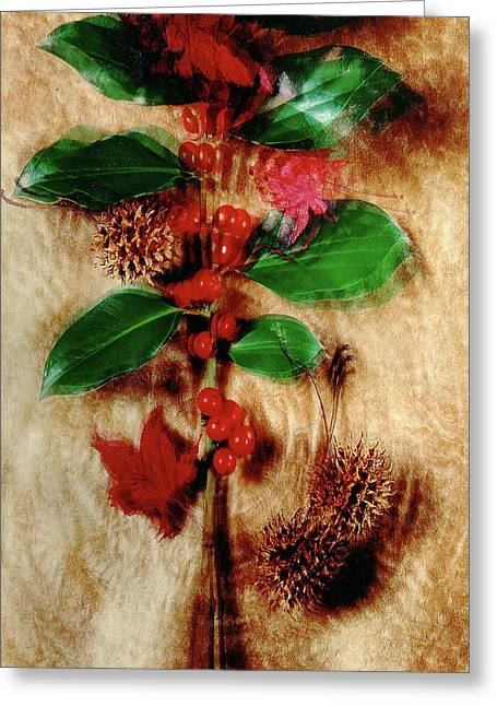 Red Holly Spinning Greeting Card