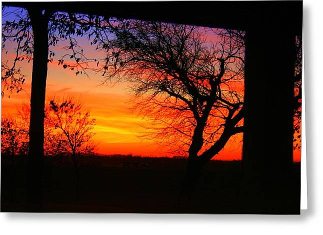 Red Hot Sunset Greeting Card by Julie Lueders
