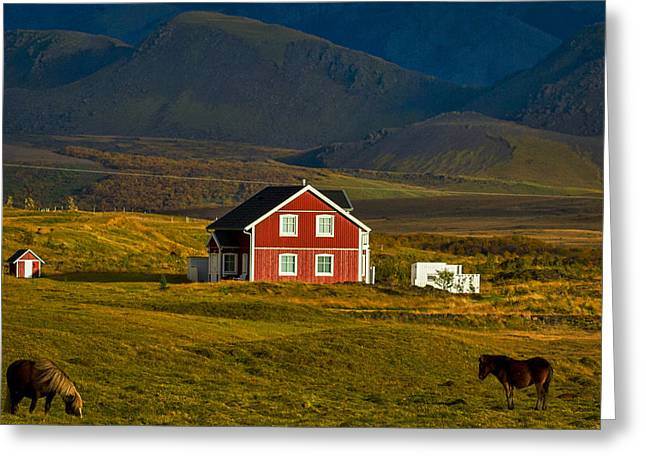 Red House And Horses - Iceland Greeting Card by Stuart Litoff