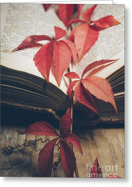 Red Ivy Greeting Card by Jelena Jovanovic