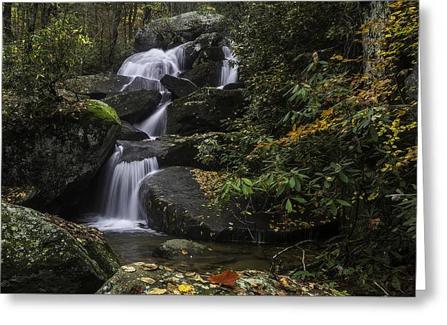 Red Leaf Waterfalls Greeting Card