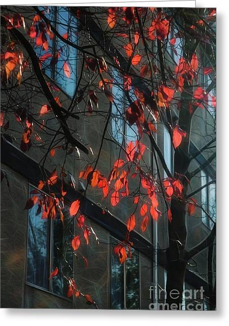 Greeting Card featuring the photograph Red Leaves by Yulia Kazansky