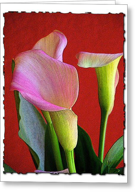 Red Lilly Greeting Card
