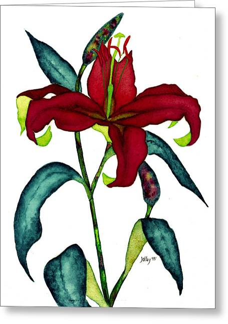 Red Lily Greeting Card by Stephanie  Jolley