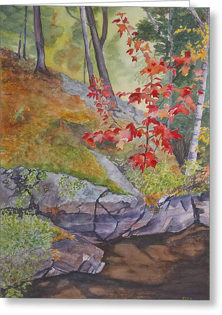 Red Maple Leaves Greeting Card by Debbie Homewood