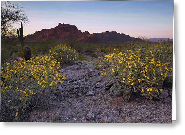 Red Mountain Dusk Greeting Card