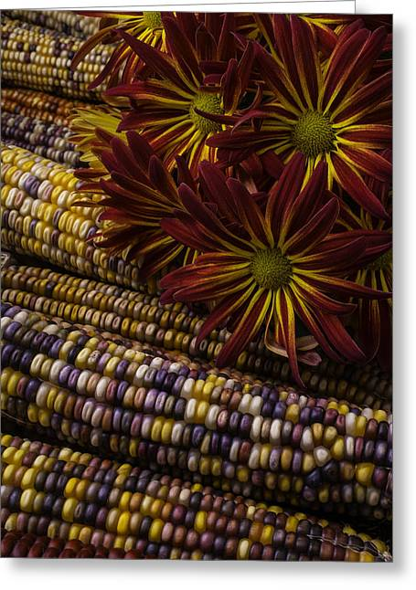 Red Mums And Indian Corn Greeting Card by Garry Gay