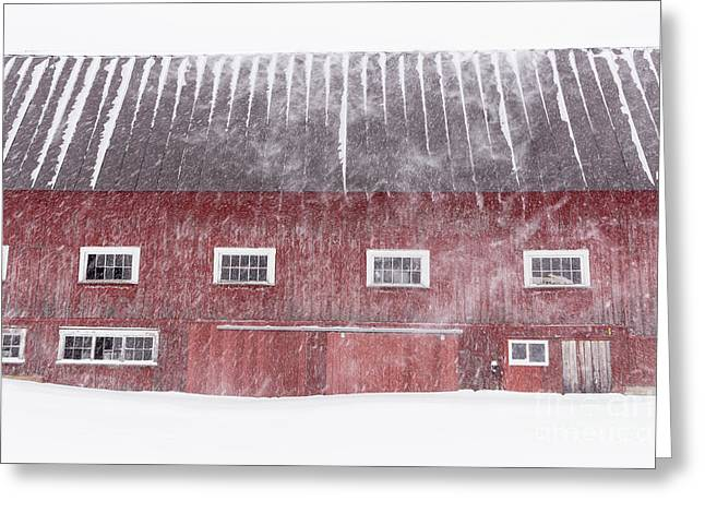Red New England Cow Barn On Dairy In Winter Storm Greeting Card by Edward Fielding