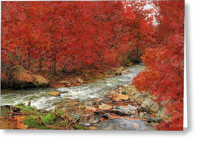 Red Oak Creek Greeting Card