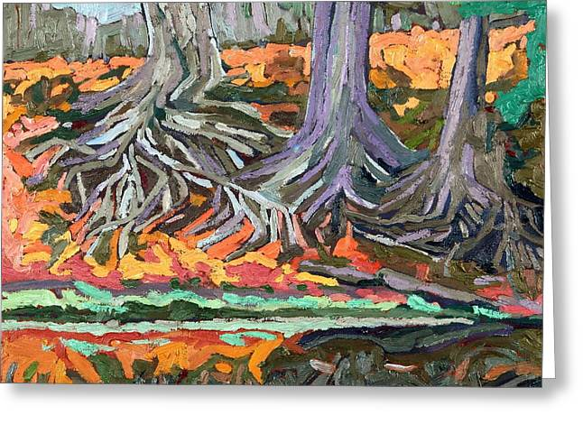 Red Oak Roots Greeting Card by Phil Chadwick