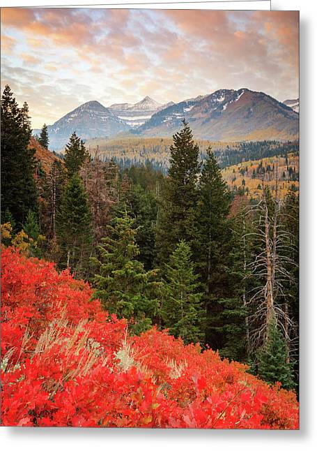 Red Oak Vertical Greeting Card