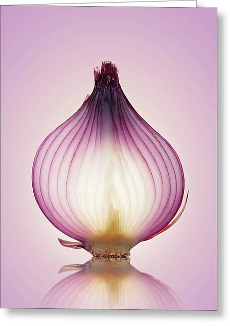 Red Onion Translucent Layers Greeting Card