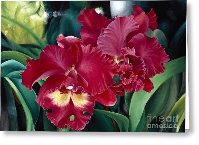 Cattleya Orchids Greeting Card by Wendy Galletta