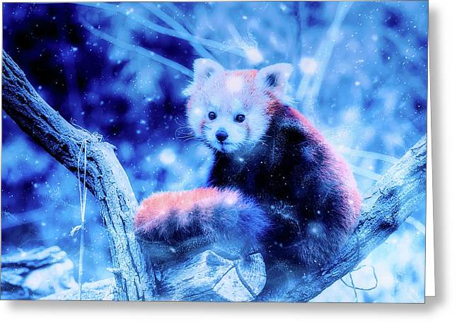 Red Panda Greeting Card by Ractapopulous
