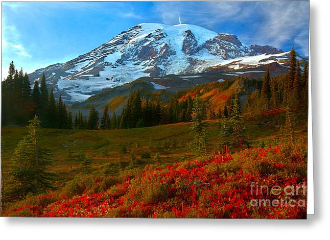 Red Paradise Under Rainier Greeting Card by Adam Jewell