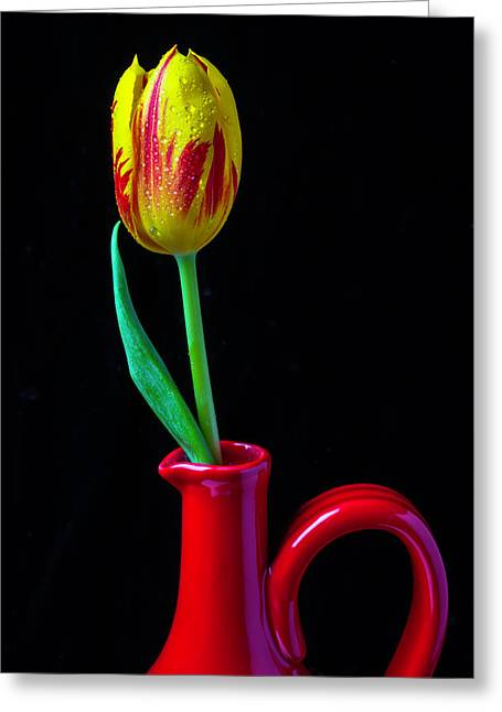 Red Pitcher And Tulip Greeting Card