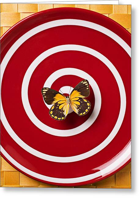 Red Plate And Yellow Black Butterfly Greeting Card by Garry Gay