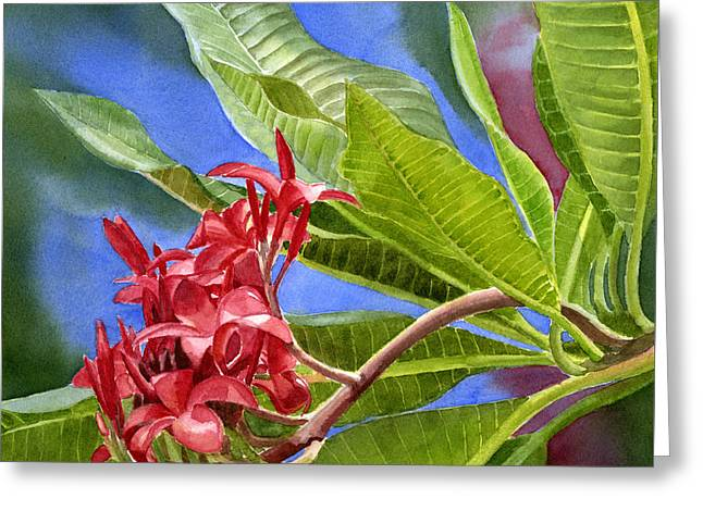 Red Plumeria Blossoms With Colorful Background Greeting Card