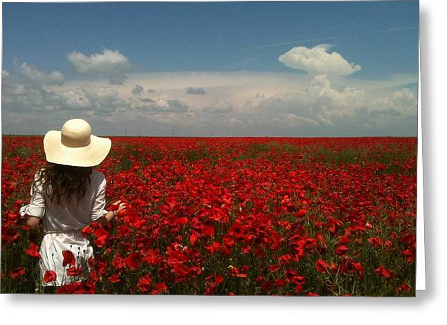 Red Poppies And Lady Greeting Card