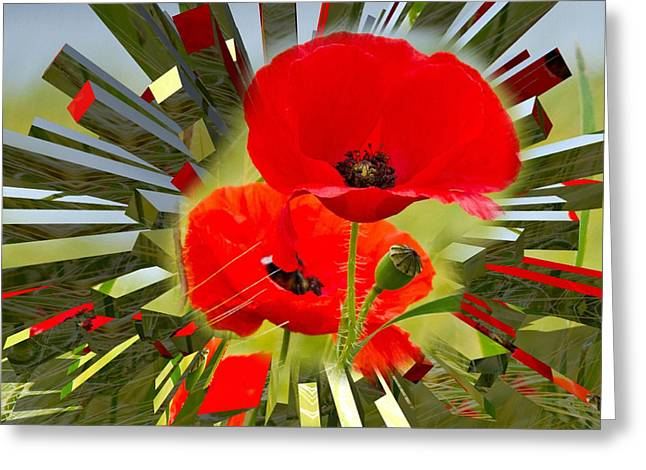 Red Poppies Go Digital Greeting Card