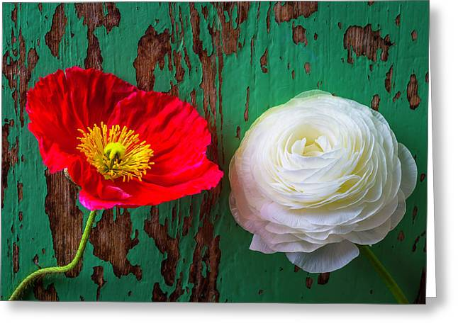 Red Poppy And White Ranunculus Greeting Card by Garry Gay