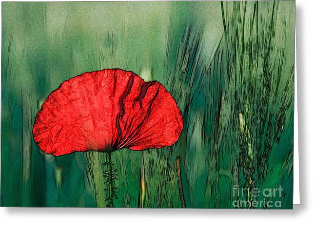 Greeting Card featuring the photograph Red Poppy Flower by Jean Bernard Roussilhe